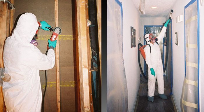 Is it worth to hire professional residential mold removal?